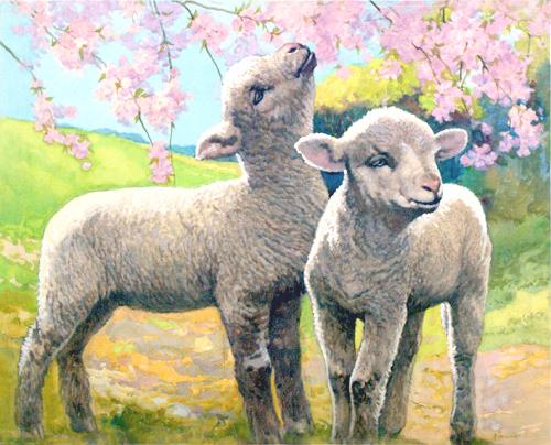 lamb 5763469737_3242e3b2de_o copy